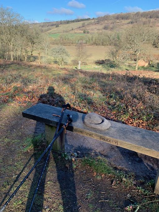 Bobby's shadow on Diddley's Bench looking north to the North Downs, along with his walking poles.