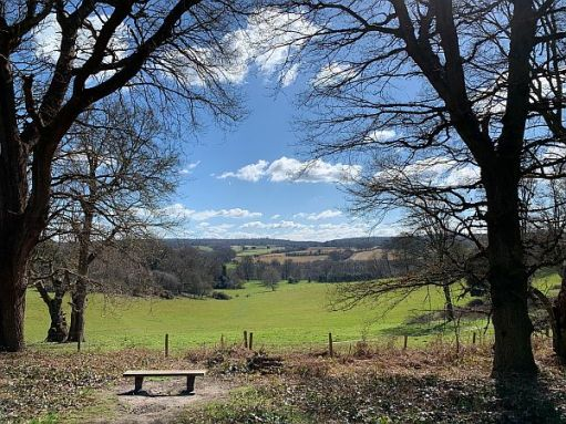 Benches - a bench with a view overlooking Leith Hill and the South Downs.