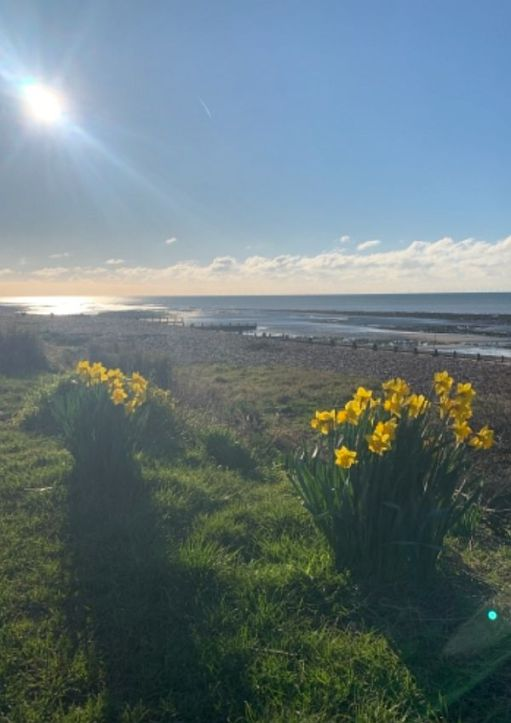 East Preston Beach, with Daffodils in the foreground.