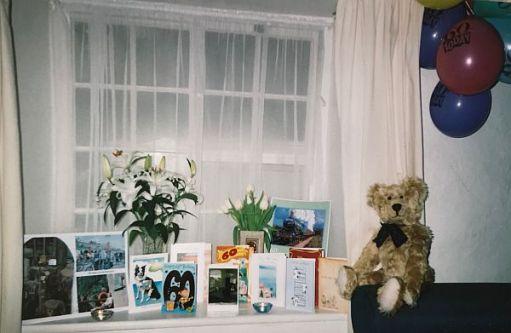 Bertie alongside Bobby's 60th Birthday cards.