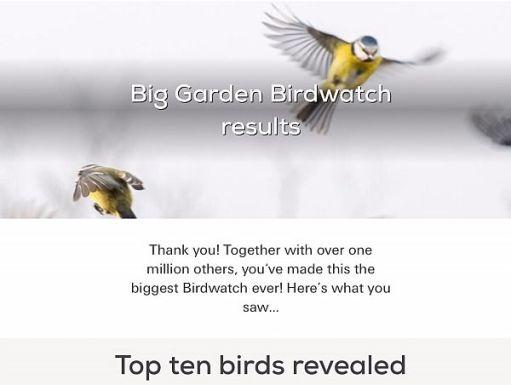 Big Garden Birdwatch Top Ten Results.