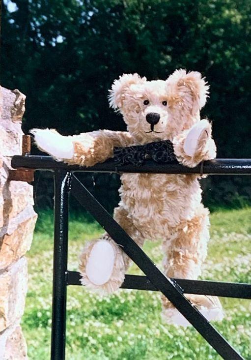 Bertie on a gate.