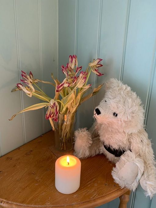 Tulips and a candle lit for Diddley.