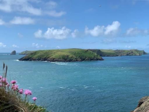 Skomer Island.