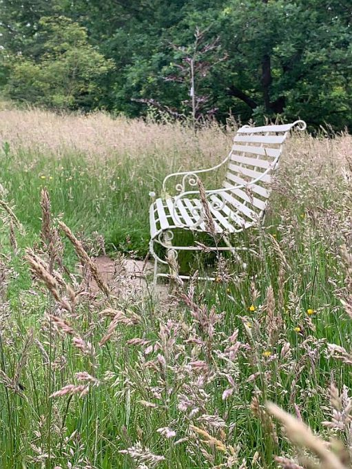 Somewhere to sit far from teh Madding Crowd. A wooden bench surrounded by long grass.