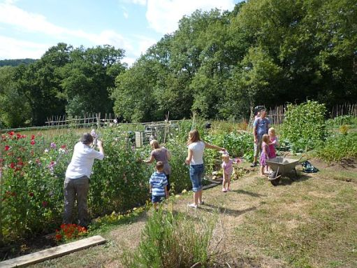Diddley, Sonny, Marie, Amy, Giselle, Layla, Ayla and Andrew with Daisy-Mae on his back. Picking Sweet Peas.