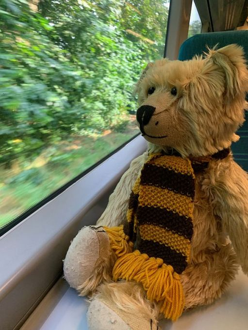 Bertie sat on the table in a Southern train looking out the window.