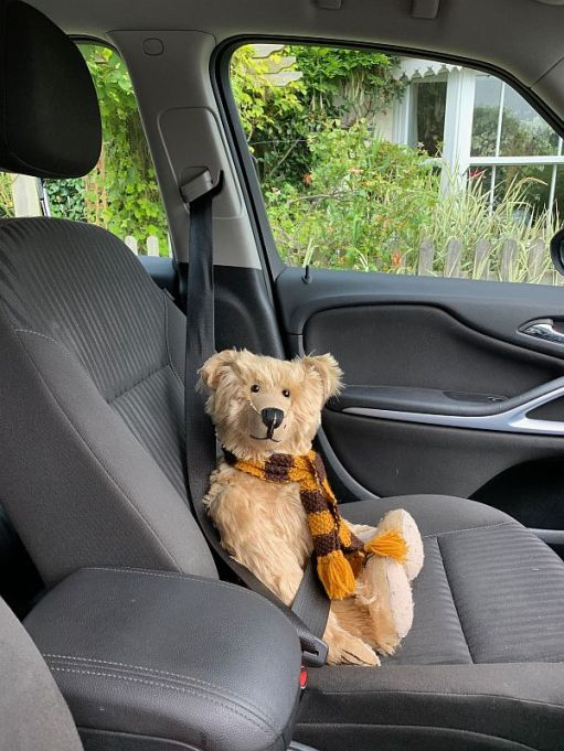 Bertie strapped into the front passenger seat of Bobby's car.