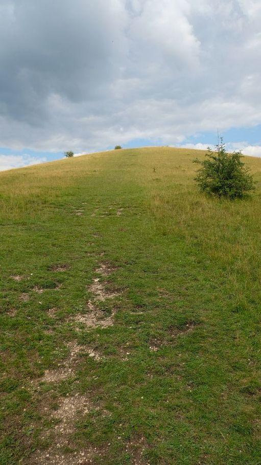 The long climb up Swift's Hill!
