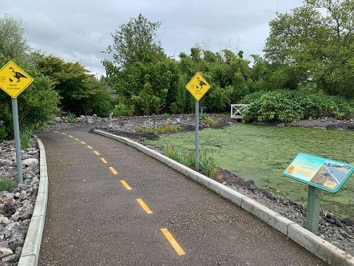 Recreation of an Hawaiin Nene Crossing at Slimbridge.