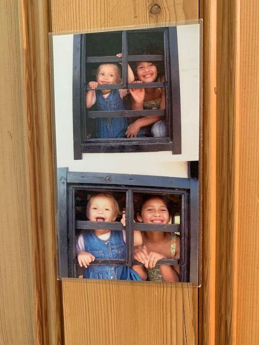 Still on the bedroom door. Layla and Jasmine at Bocketts Farm, September 2006.