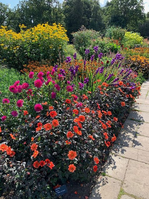 Blaze of colourful flowers at Wisley.