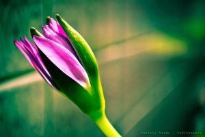 benefit of mindfulness