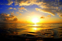 Identify - 5 Obstacles to Mindfulness - Ocean
