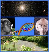 https://i0.wp.com/www.mindmined.com/library-images/sapiens_rising.jpg
