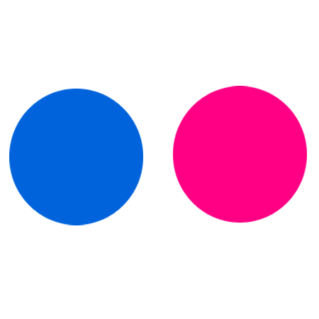 Logo Flickr plain