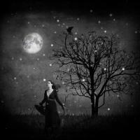 Μάγισσα νύχτα