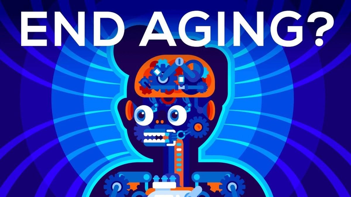 Kurzgesagt stellt die Frage, ob wir das Altern aufhalten sollten oder lieber doch nicht