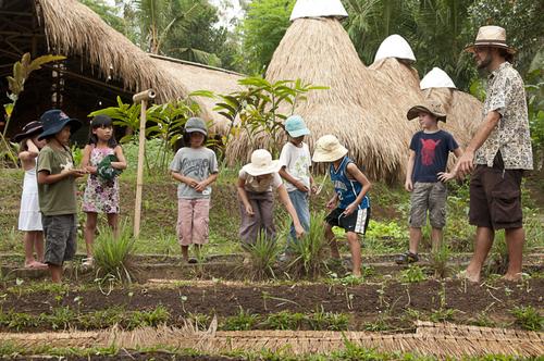 зеленая школа бали