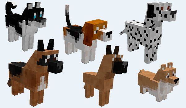 example where we can see the different breeds of dogs adds doggstyle mod 1.7.10.