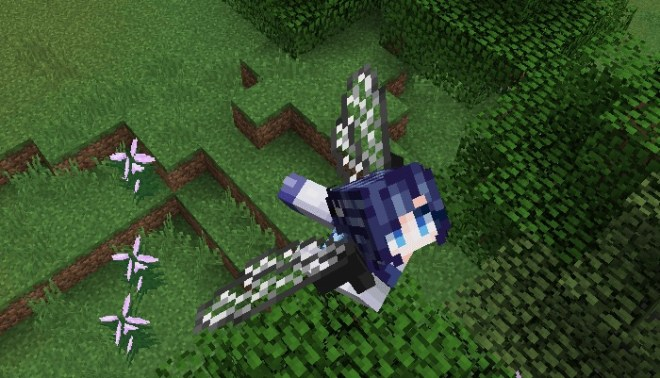 Elytra Dragon Fly Wing 1
