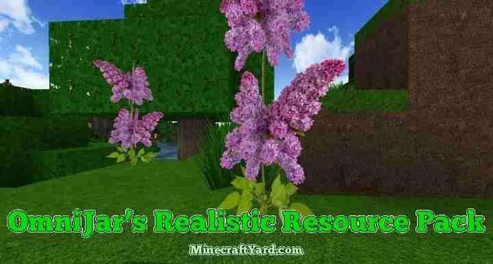 Omnijars Realistic Resource Pack 1.16.4/1.15.2