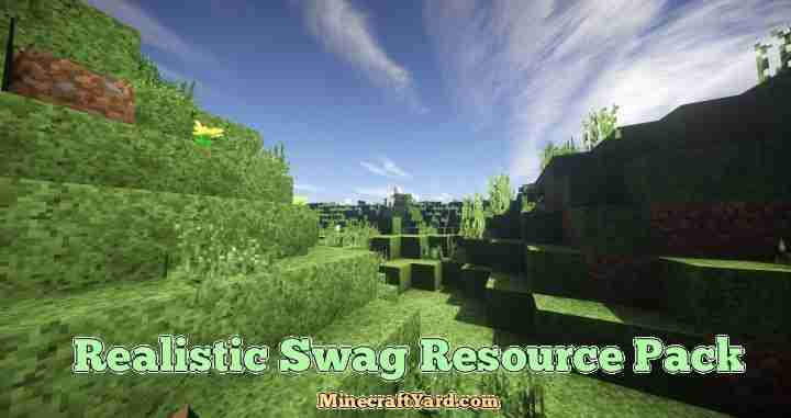 Realistic Swag Resource Pack 1.16.3/1.15.2
