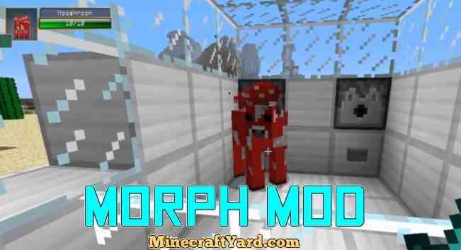 Morph Mod 1.16.2/1.16.1/1.15.2