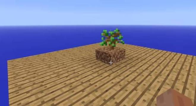Tree Growing Simulator