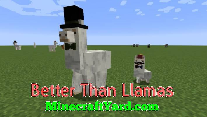 Better Than Llamas 1.16.5/1.15.2