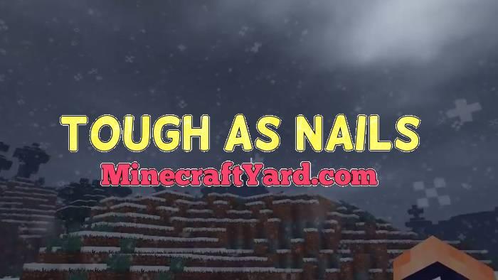 Tough as Nails 1.14/1.13.2/1.12.2/1.11.2