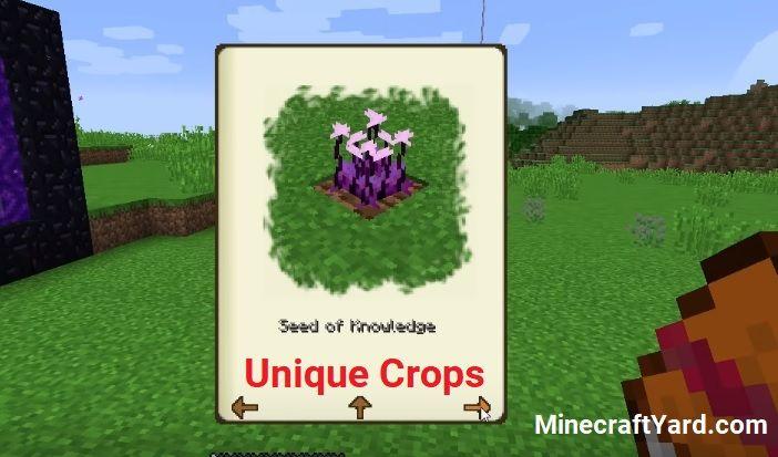 Unique Crops Mod 1.17/1.16.5/1.15.2