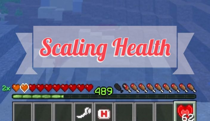Scaling Health 1.17.1/1.16.5