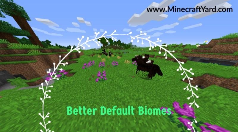 Better Default Biome 1.16.3/1.15.2