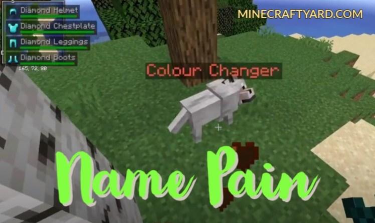 Name Pain Mod 1.16.5/1.15.2