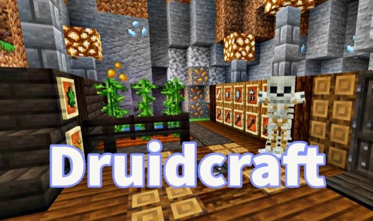 DruidCraft Mod 1.16.5