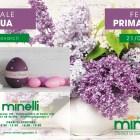 MINELLI_festa_primavera_V2