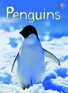 Usborne Beginners Penguin
