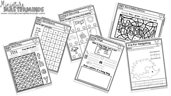 Full Pages Preschool Printable Worksheet Some Or None