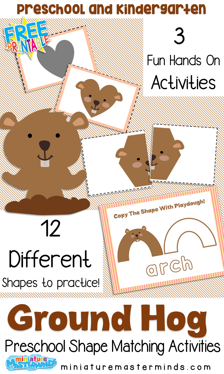 hight resolution of Free Printable Groundhog Shadow Shape Matching 3 Fun Hands On Preschool  Activities – Miniature Masterminds