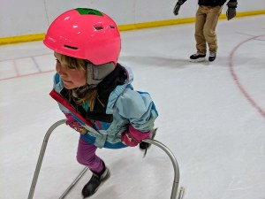 Rent The Whole Ice Rink For Your Family