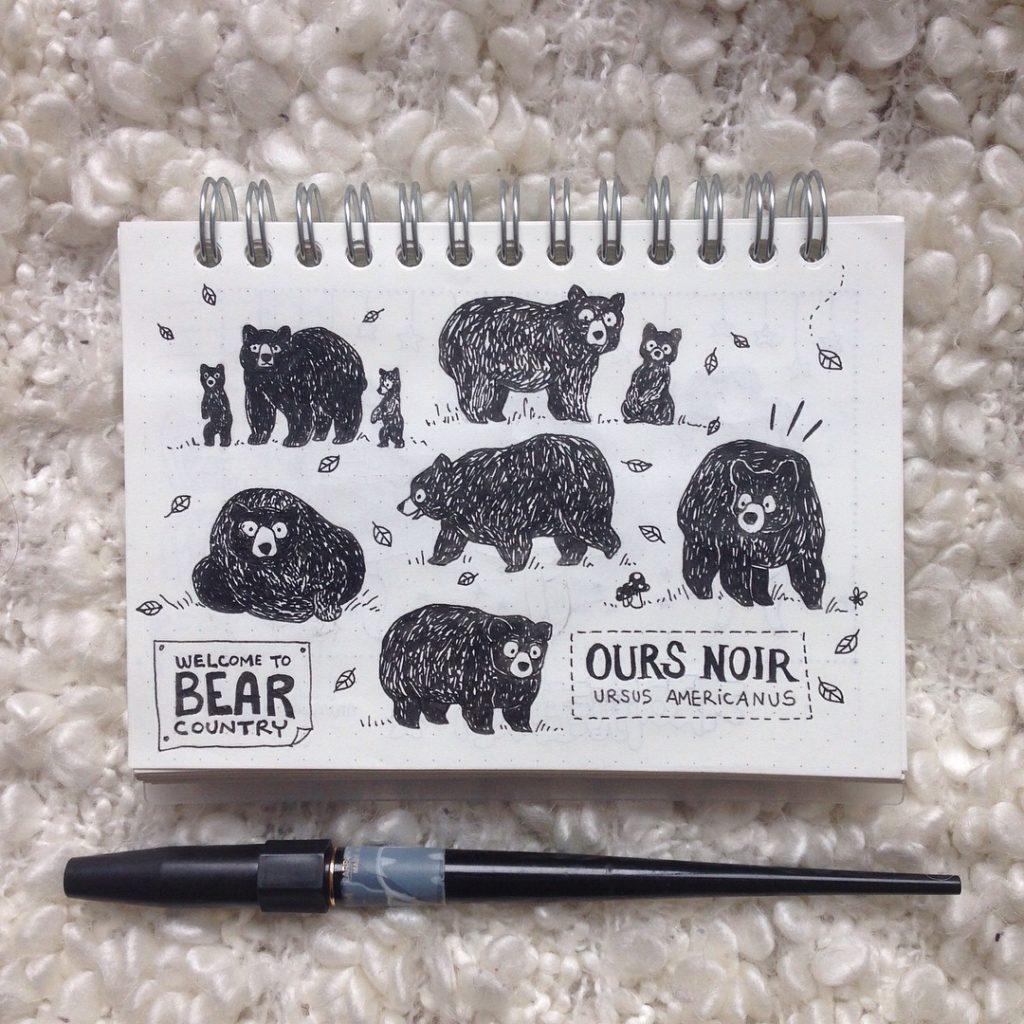 ours noir, ursus americanus, bear country, road trip, croiser des ours noir, que faire lorsqu'on croise un ours, illustration ours, dessin d'ours, ourson et sa maman, maman ours, bouba mon petit ourson, croquis, MiniKim, illustrateur, montréal, cute, mignon, gribouillage, doodle kawaii