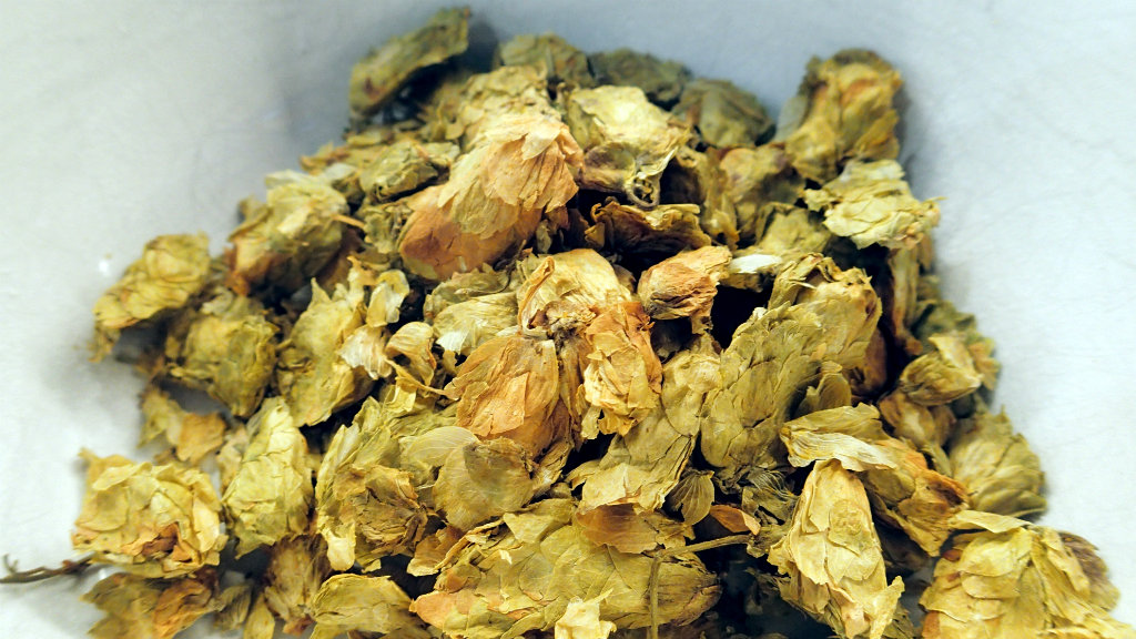More hops next time to really make the Black Ale interesting