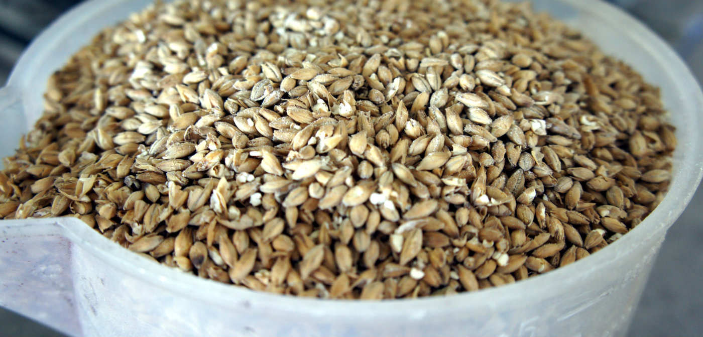 BIAB is an all grain brewing method, but simpler!