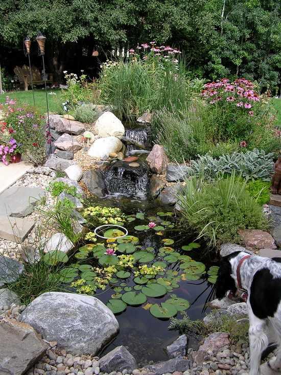 Decorative Pond Rocks