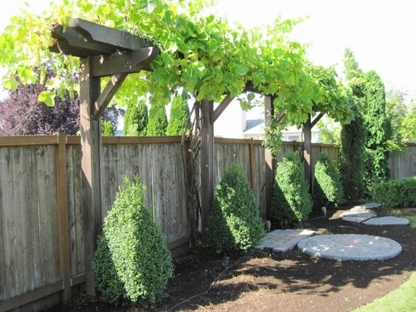 30 Fascinating Grape Arbor Ideas – The Perfect Patio Decor