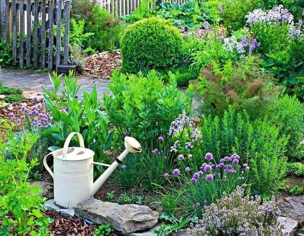Herb Garden Design Small Yard Landscaping Ideas Grassless Gardens