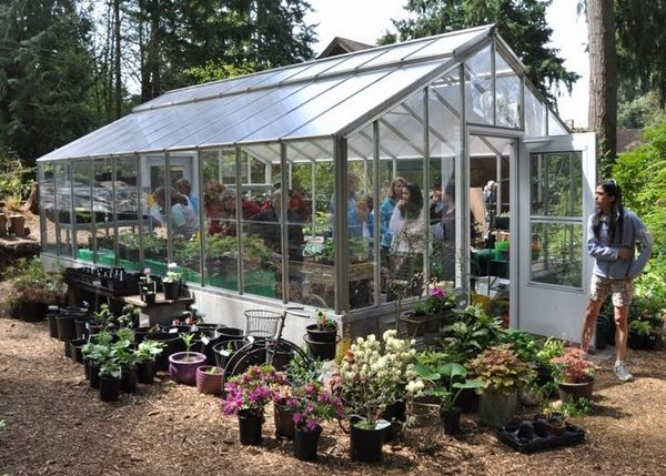 Garden Nursery – Tips And Ideas How To Start Your Own Plant Nursery