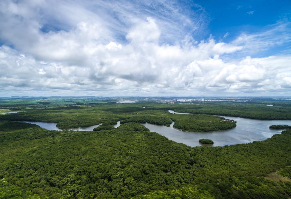Brazil to redo Amazon mining decree after criticism - MINING.COM