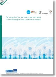 The nature of the Social Investment market, a snapshot in 2013